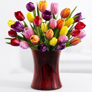 Tulips are a great alternative to the rose for Valentine's Day because they are classic and affordable.
