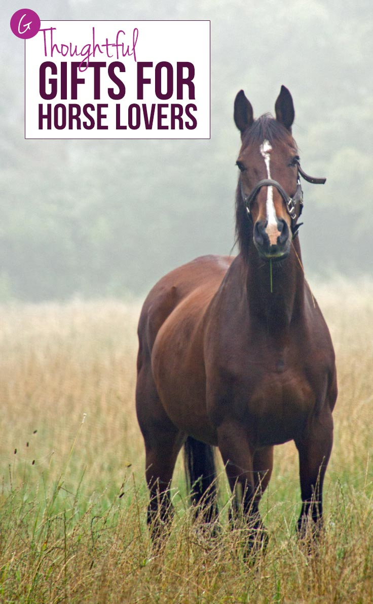 I've been searching high and low for some thoughtful gifts for horse lovers - and now I've found them!