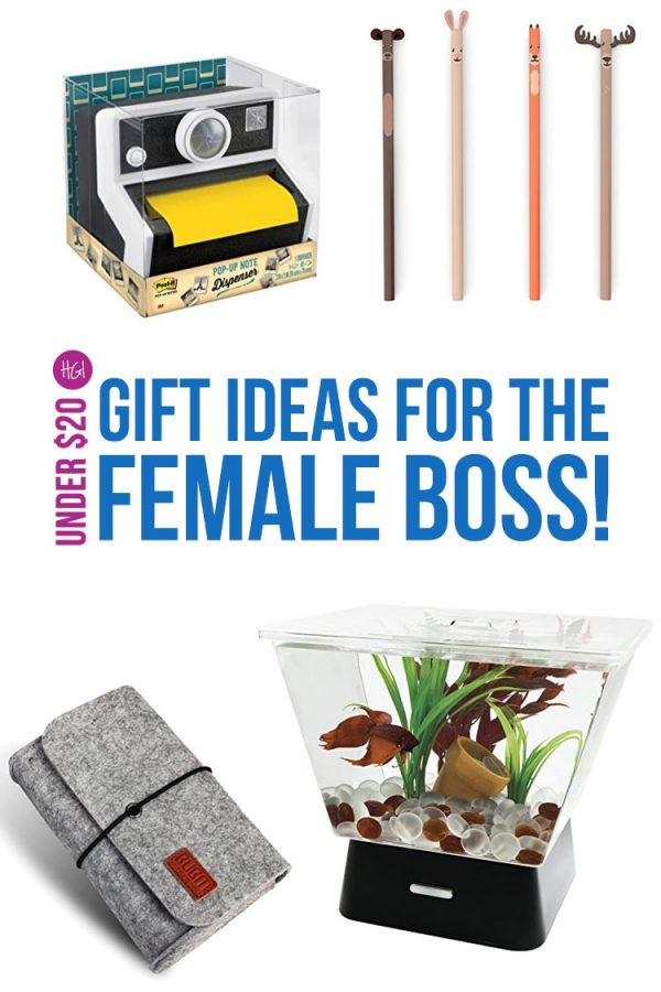 Just what I needed! Funky gift ideas for the female boss. She is going to LOVE that fish tank!