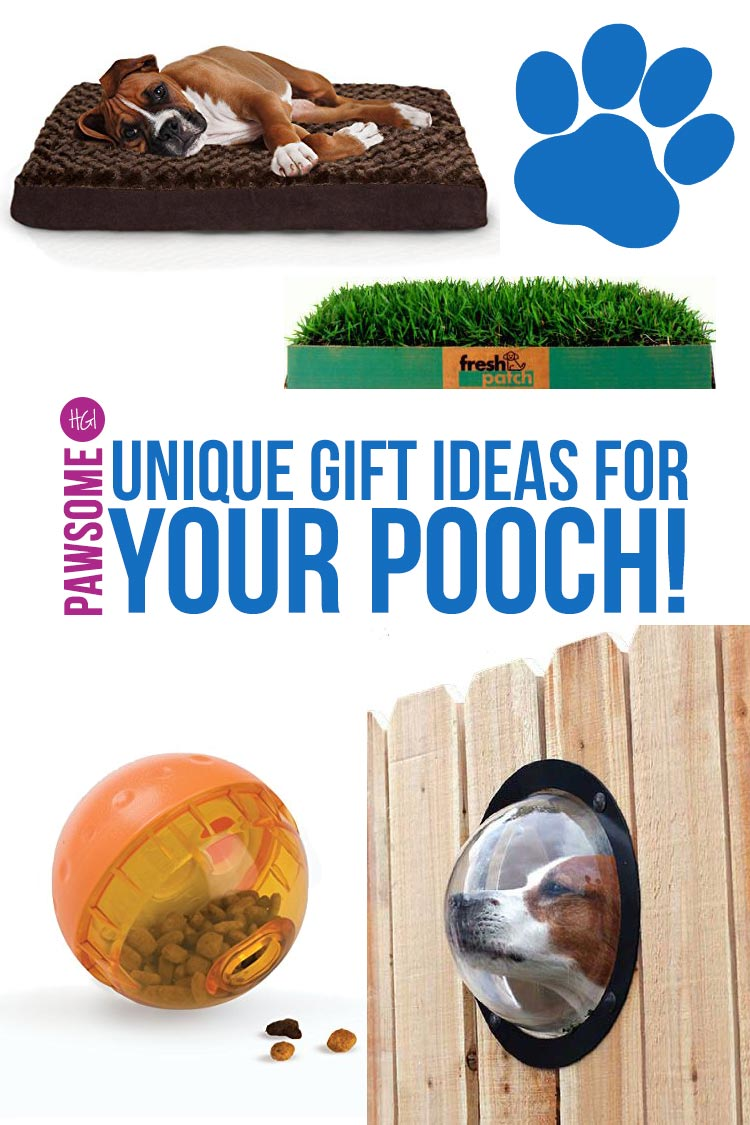 Unique Christmas Gifts for Dogs: Pawsome Gift Ideas for Your Pup ...