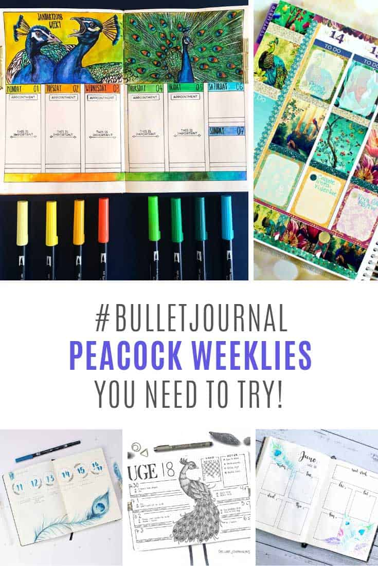 Oh my! Loving these BUJO peacock weeklies!