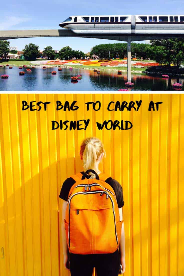 We've got the lowdown on the best bag to carry at Disney World as we as the all important things you need to carry in it. Especially if you're a mom! #disneyworld