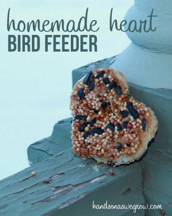 Homemade Heart Shaped Bird Feeder