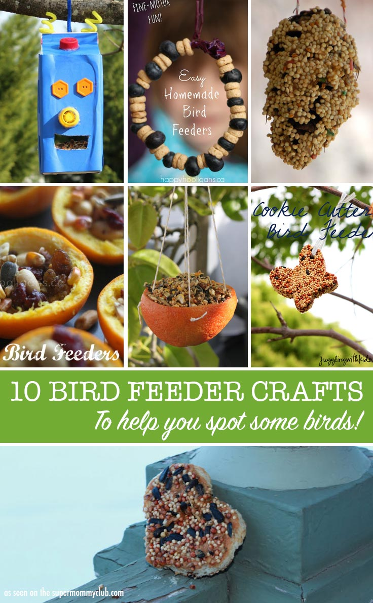how to make a bird feeder for kids crafts