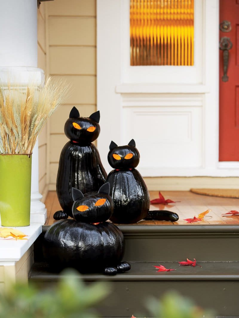Black Cat Jacolantern