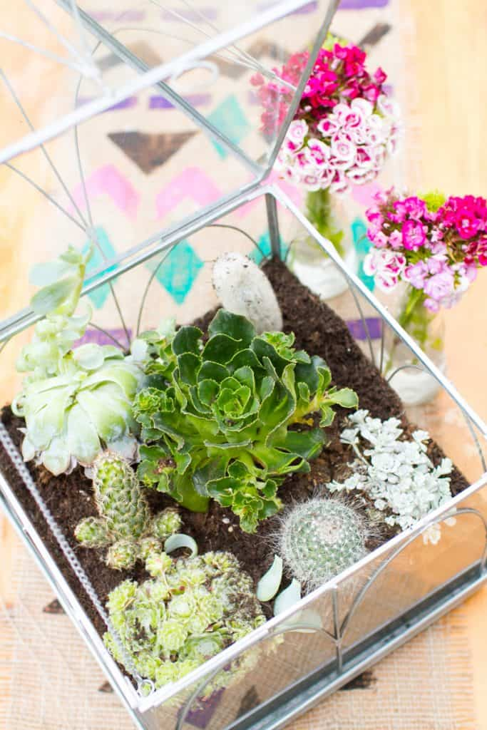 Unique Terrarium Ideas | Succulents | DIY | Glass Planters | Unique Wedding Favors