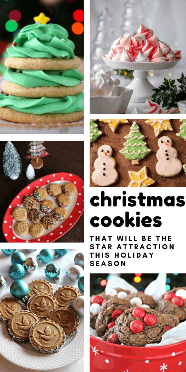 30 Festive Christmas Cookie Recipes Santa (and your family) will Go Crazy Over!