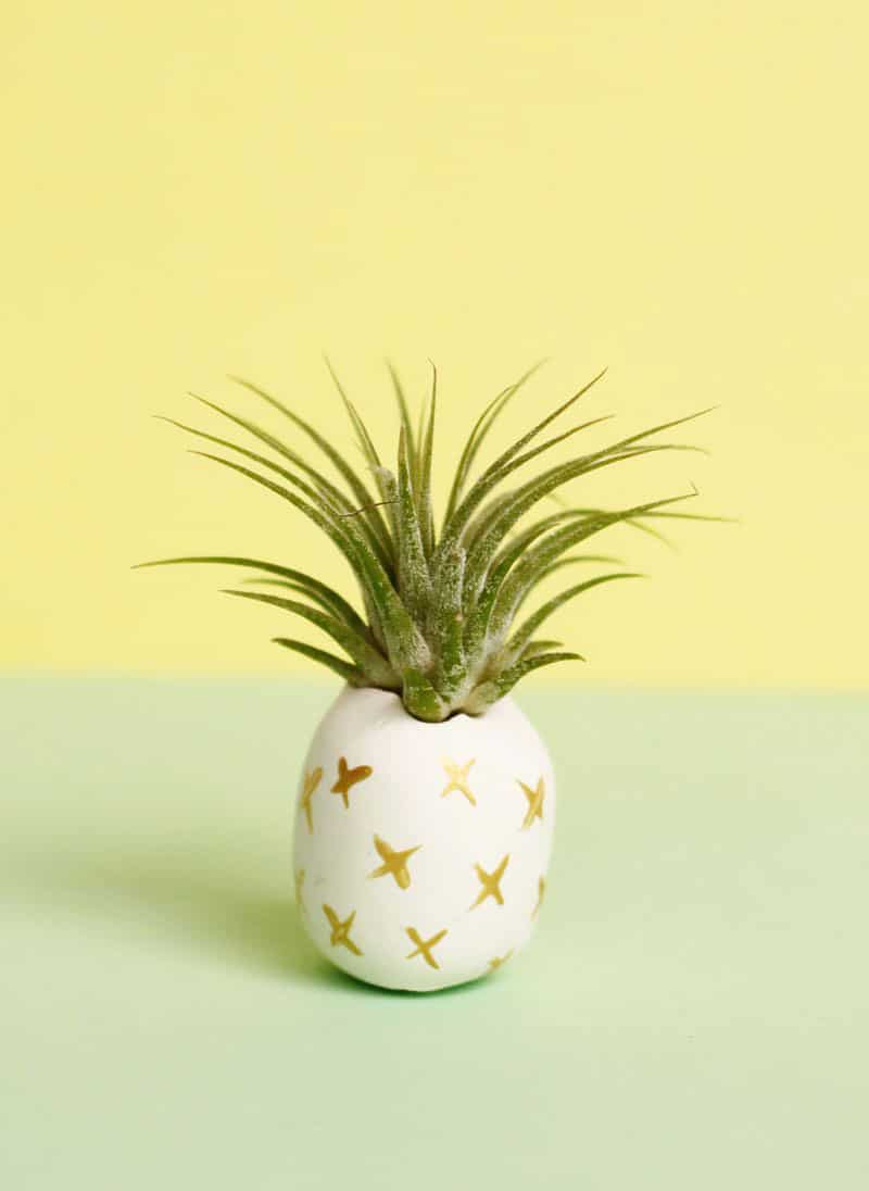 32 stunning diy pineapple crafts to brighten your day for Air plant holder ideas