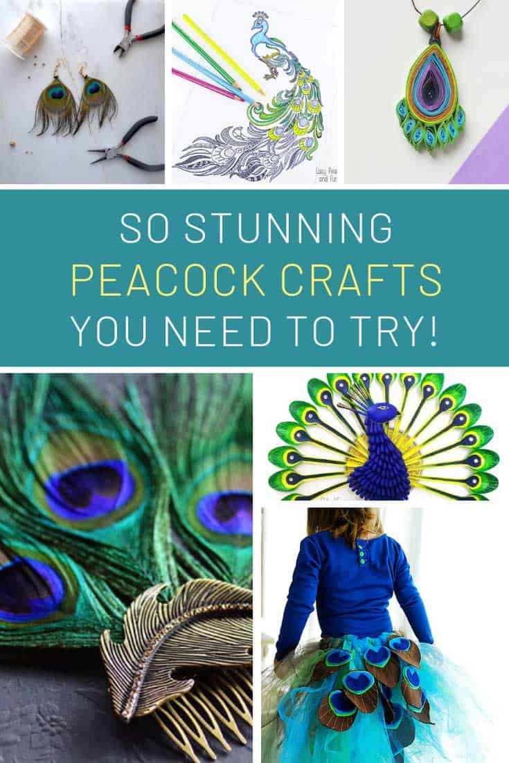 How beautiful are these DIY peacock projects! I love that tutu!