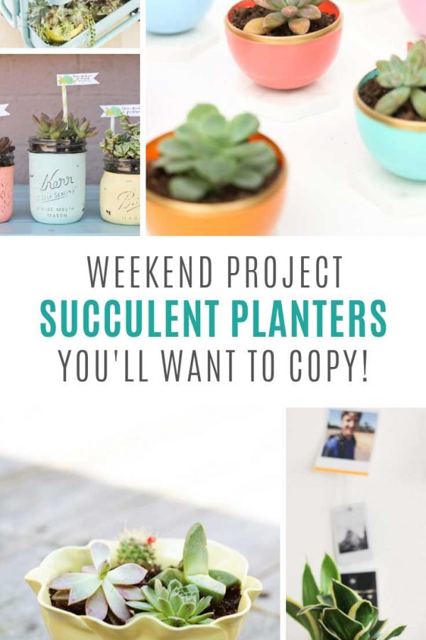 These DIY succulent planters are the perfect weekend project!