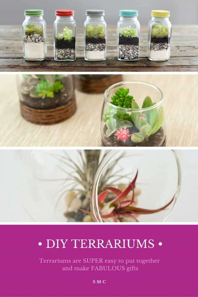 These terrariums are GORGEOUS and so much cheaper than the ones you buy from the store!