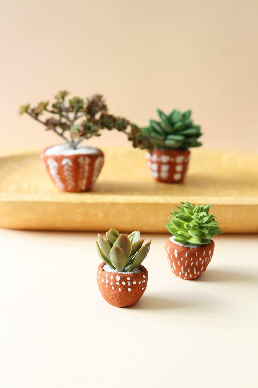 These terracotta pinch pots are super easy to make and the perfect gift for a friend who loves succulents!