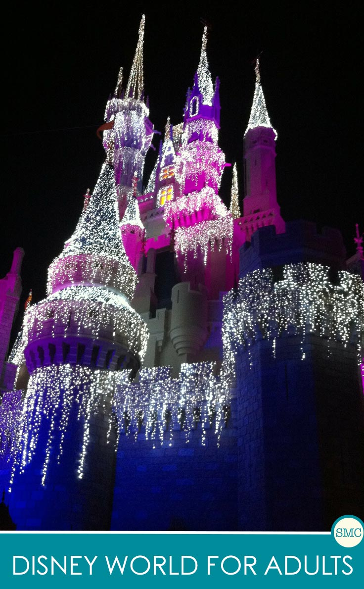 This is just what I need to convince my hubby that we can still go to Disney World even without kids!