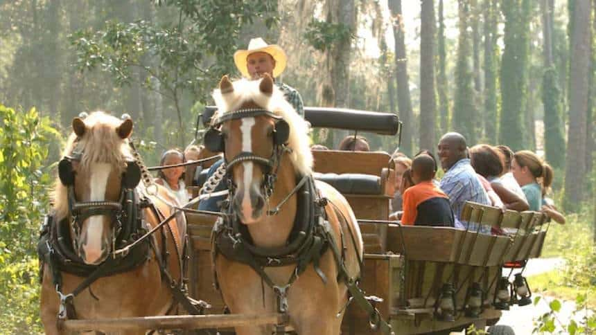 Take a wagon ride over at Fort Wilderness