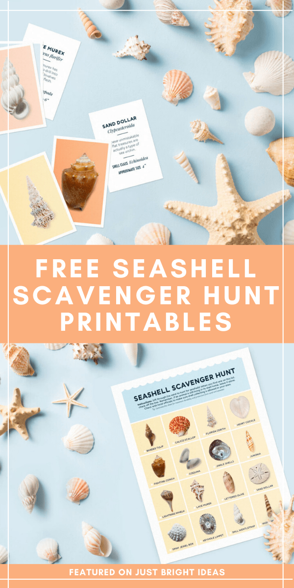 Whether you're heading to the beach or looking for a fun activity to do at home these free seashell scavenger hunt and flash card printables are fun for all ages.