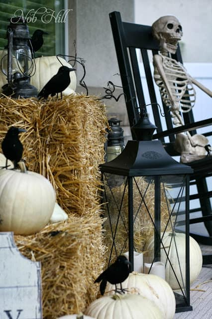 Or scare the trick or treaters silly with this skeleton and black crow combo!