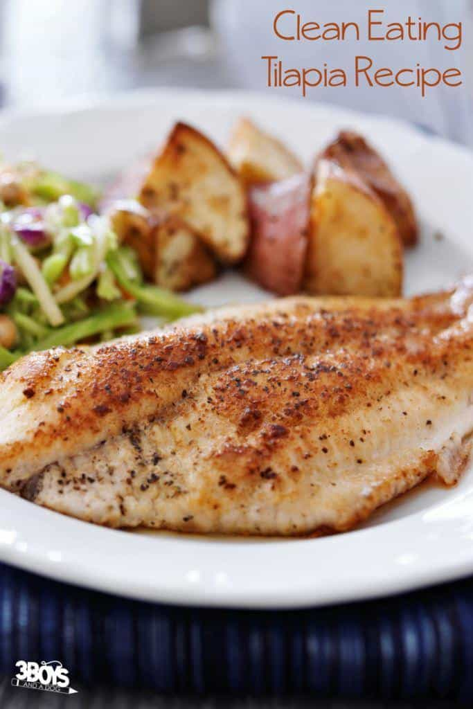 Healthy Clean Eating Tilapia Meal
