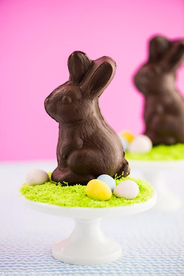 Homemade Chocolate Bunny