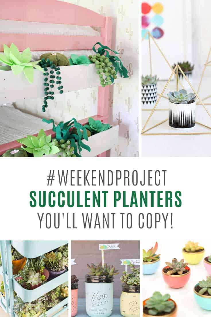 LOVING these homemade succulent planters!