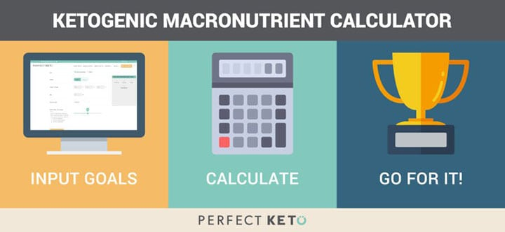 Calculate your key macros in minutes