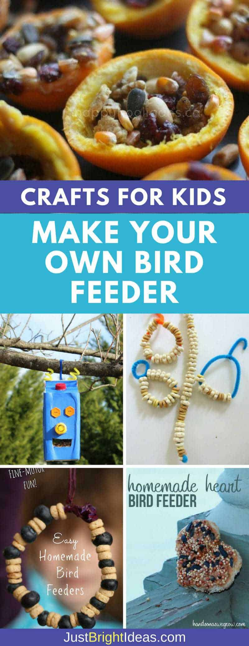 Make Your Own Bird Feeder