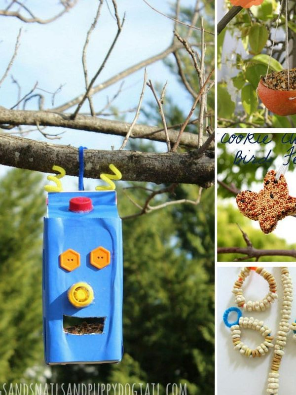 Make Your Own Bird Feeder Station