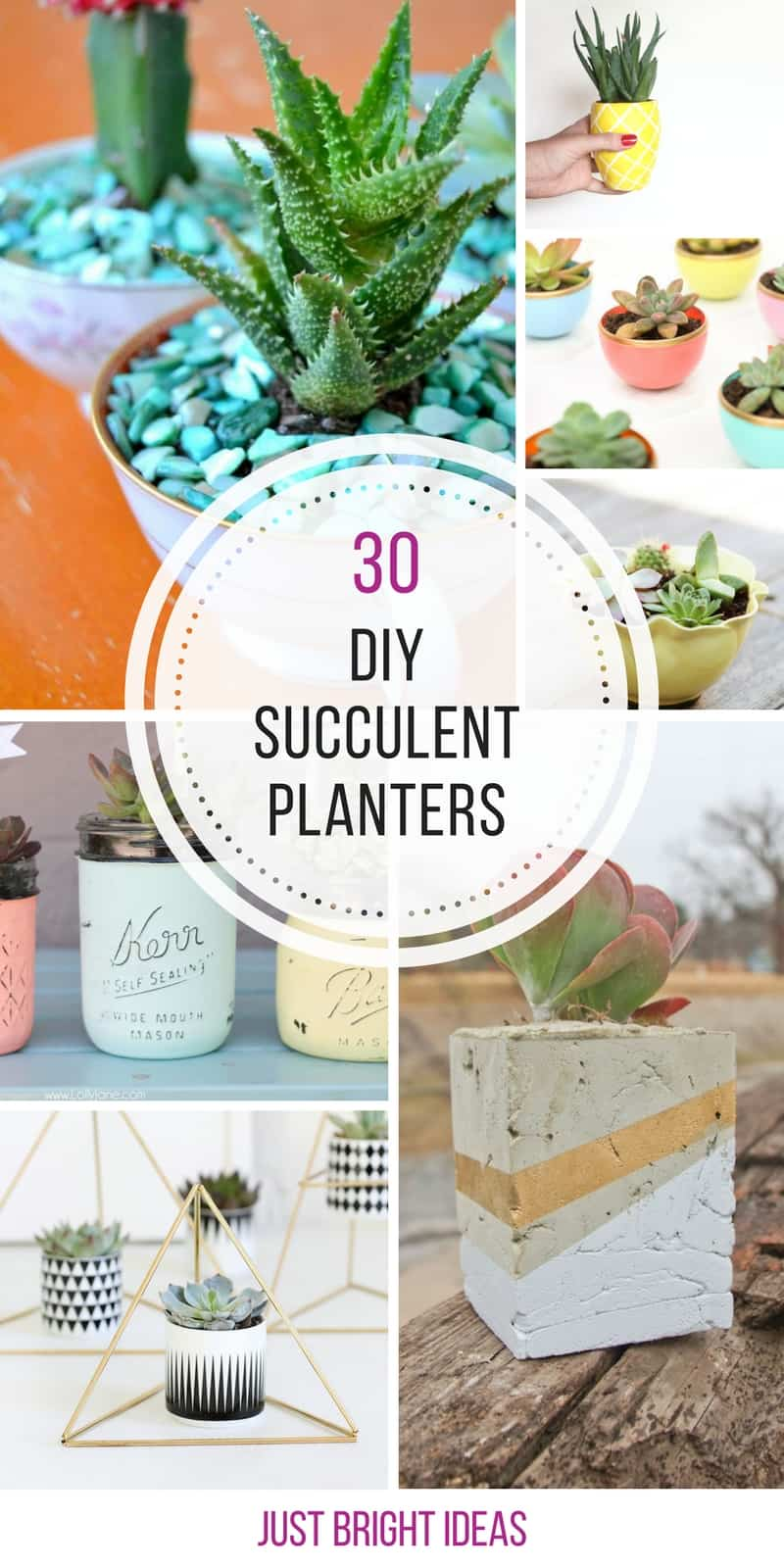 Loving these DIY succulent planters - great gift ideas too!