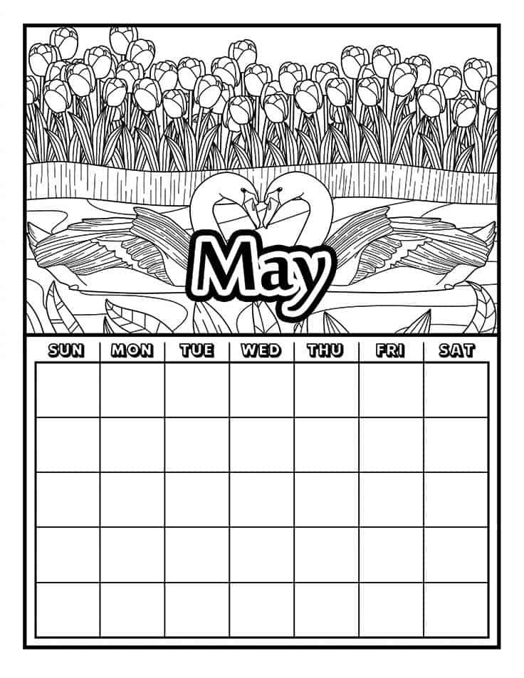 May calendar with swans coloring page