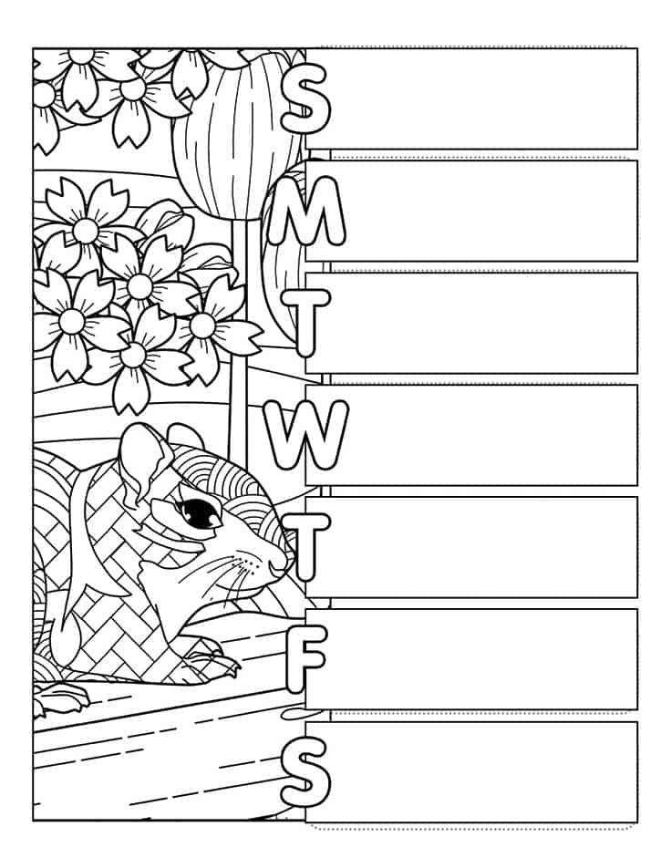 Weekly spread coloring page