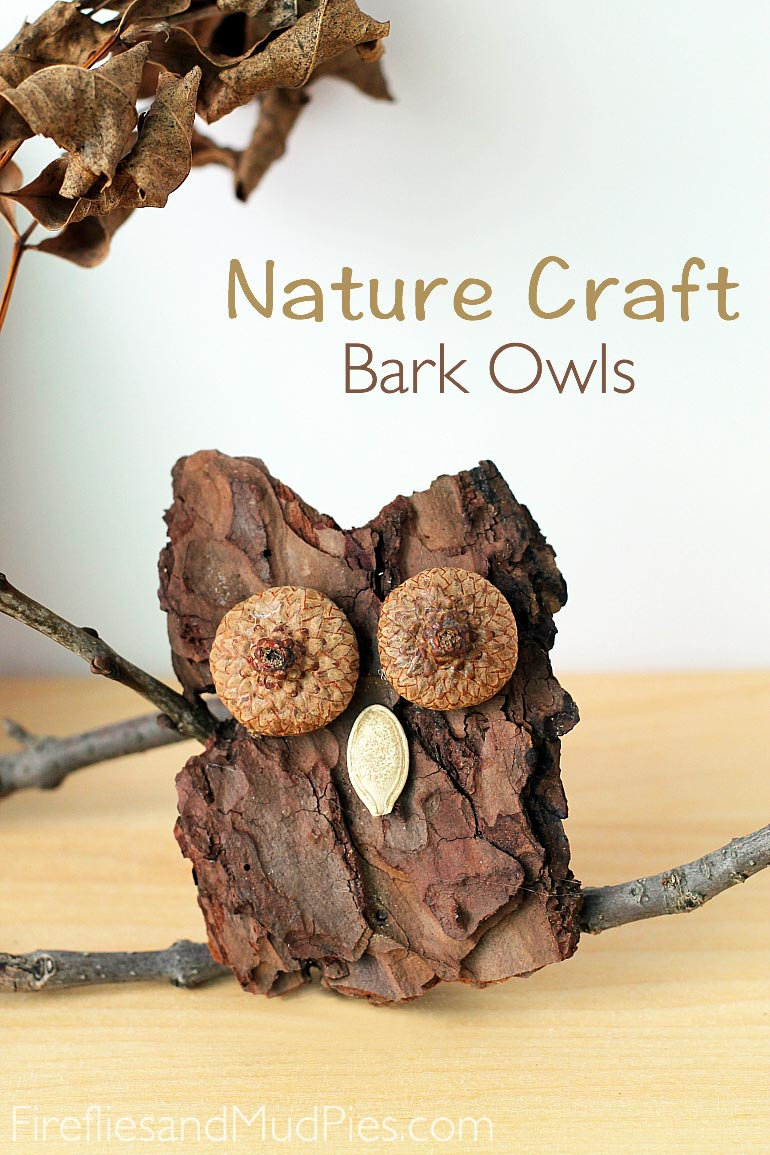 http://www.firefliesandmudpies.com/2014/08/30/bark-owl-craft/