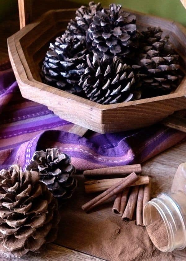 Pinecone Pot Pourii