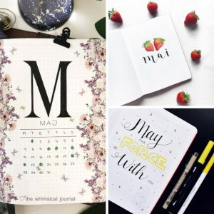 Plan with Me Bullet Journal May Cover Pages