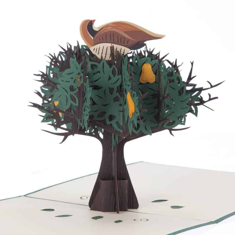 Partridge In A Pear Tree Pop Up Card