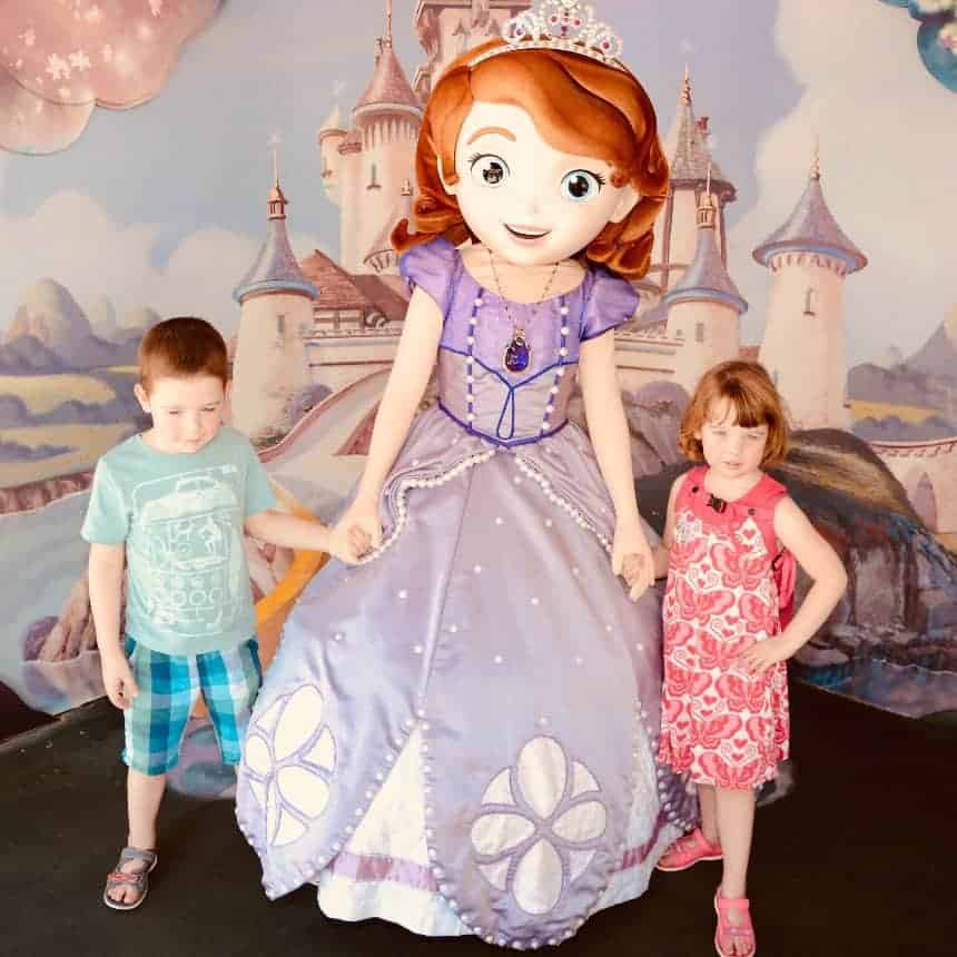 You can meet Princess Sofia at Hollywood Studios