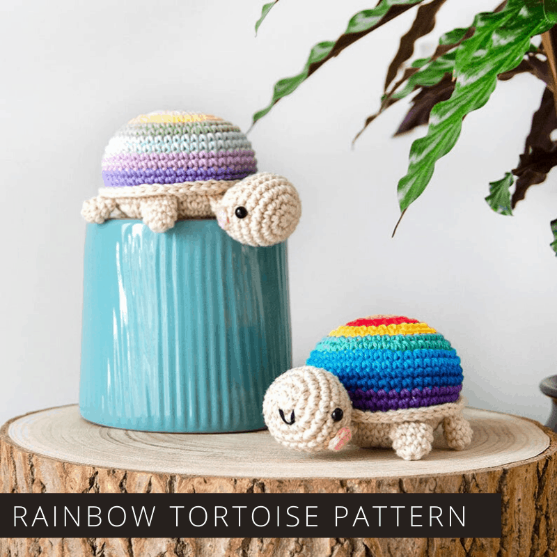 This Sweet Rainbow Tortoise is Sure to Make You Smile