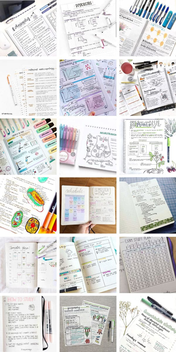These school BUJO layouts and note taking ideas are what you need to stay on top this semester! #bujo #studygram #bulletjournal