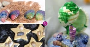 Seashell Crafts for Kids - Preserve Those Summer Memories Forever!