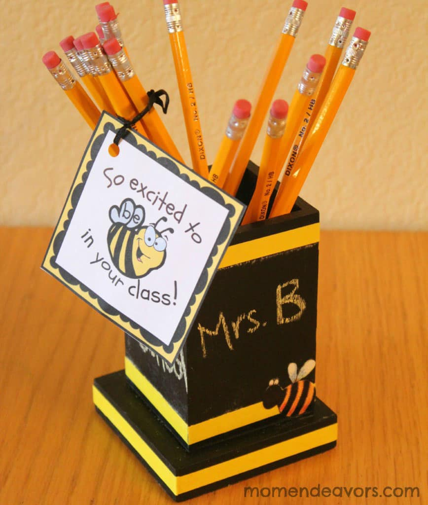 So Excited to Bee in Your Class Teacher Gift
