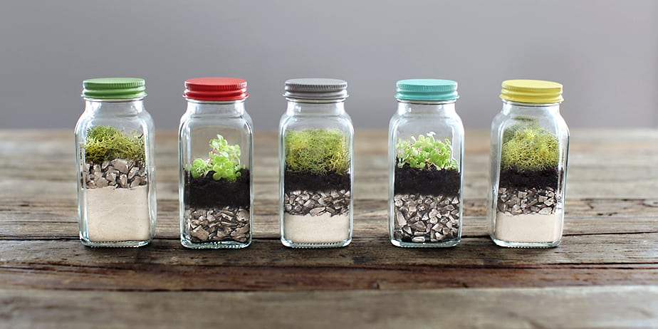 12 Unique Terrarium Ideas That Make Gorgeous Gifts 3 Is Great For