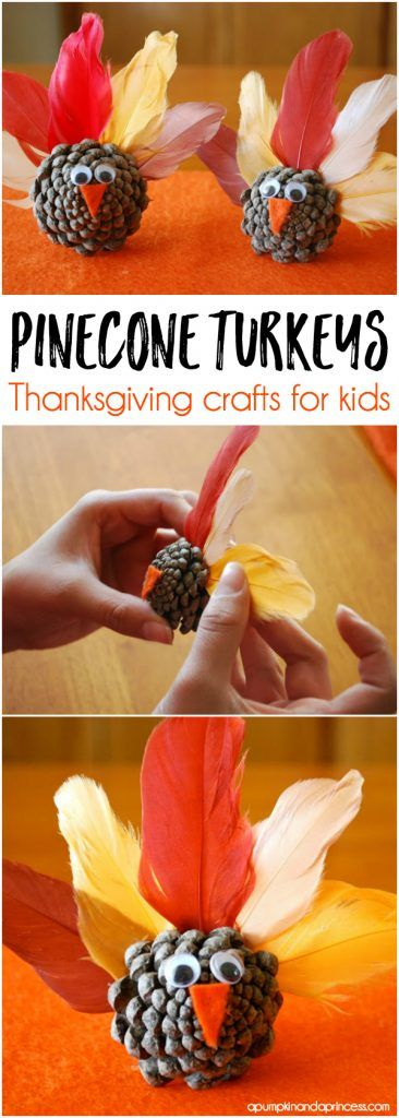 Thanksgiving Preschool Craft Pinecone Turkeys