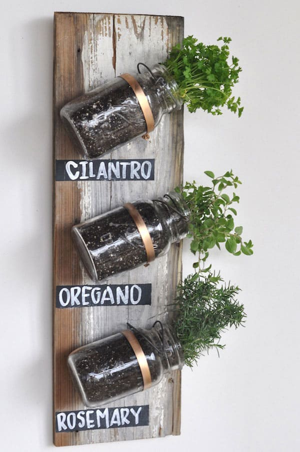 Transformed Mason Jar Herb Garden