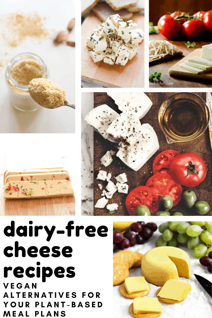 These dairy-free cheese recipes taste delicious and are perfect for vegan and plant-based diets