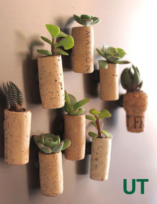 Cork Planter Fridget Magnets