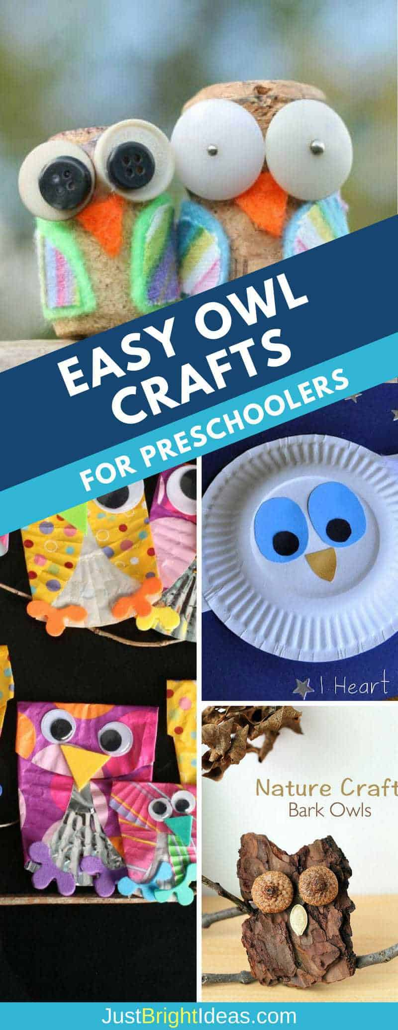 easy owl crafts for preschoolers pinterest