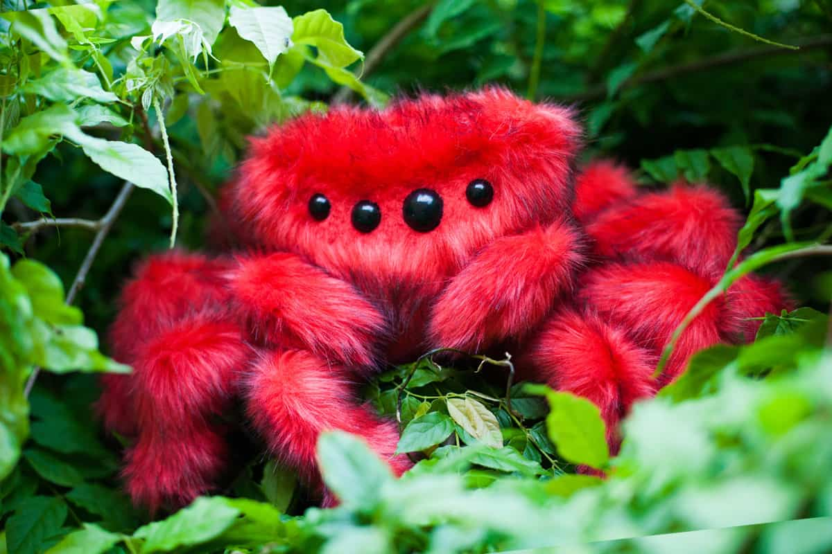 You can buy theAngry Arabella Red Spider Plush Toy here