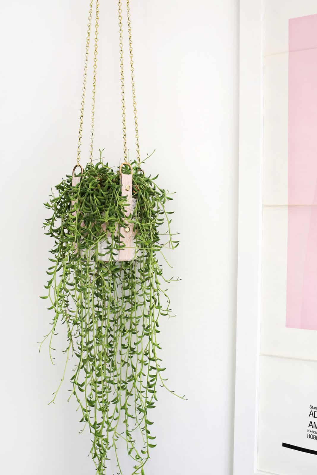 Hanging Leather Strap Planter