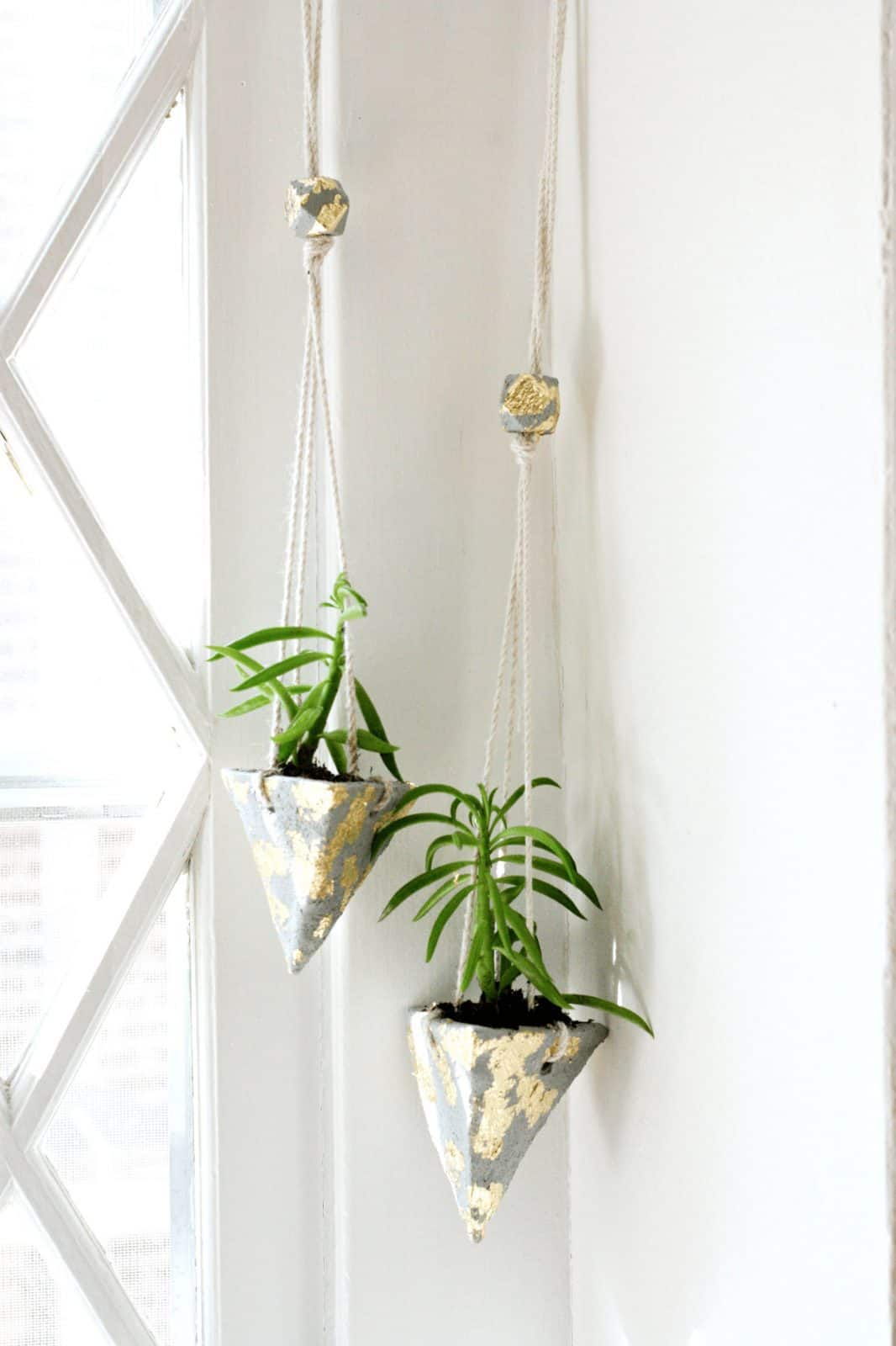 DIY Cement Hanging Planters