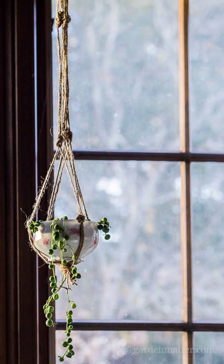 Hanging Teacup Planter Upcycle with China & Pearls