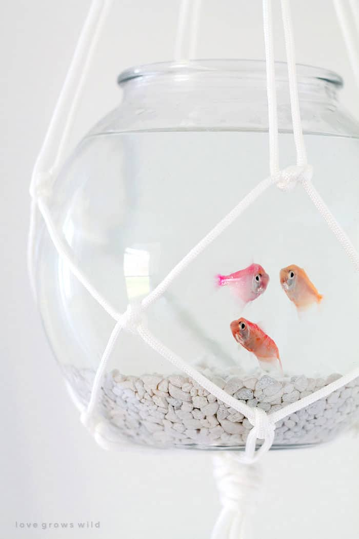 Macrame hanging Fish Bowl