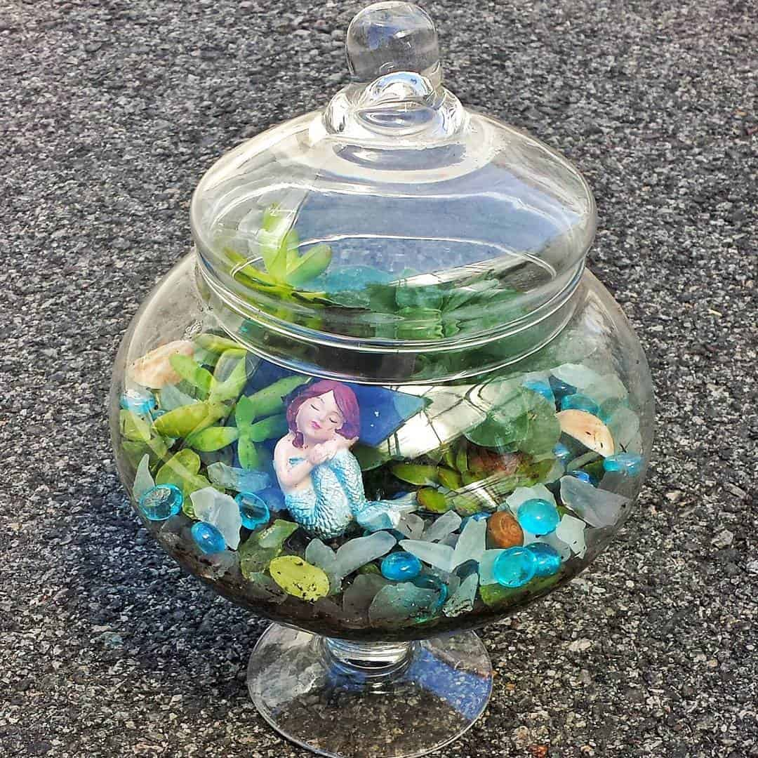 Succulent Mermaid Terrarium